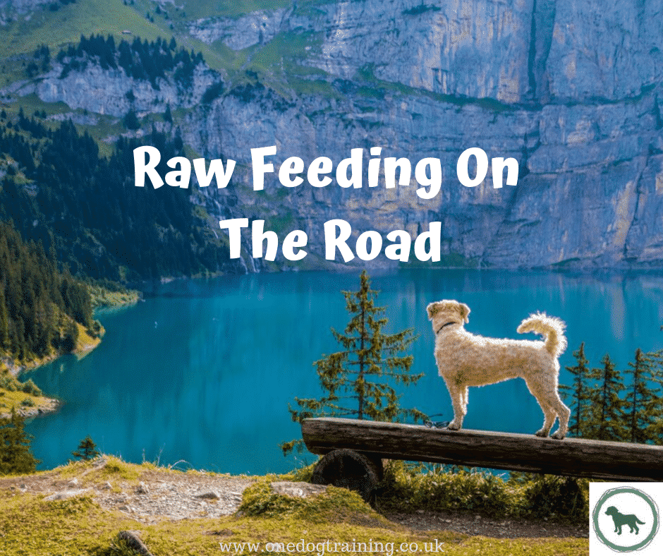 Raw feeding on the road