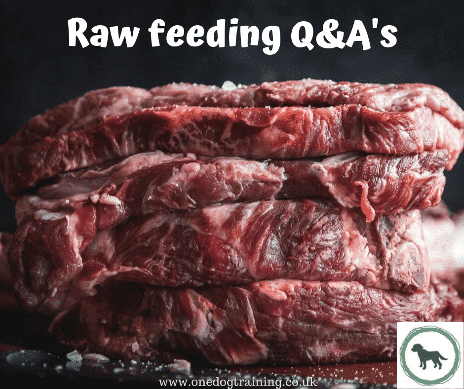 Raw feeding QAs