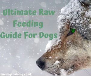 Ultimate Raw Feeding Guide For Dogs
