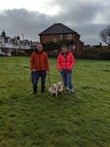 Dog Training In Belper – Recall training