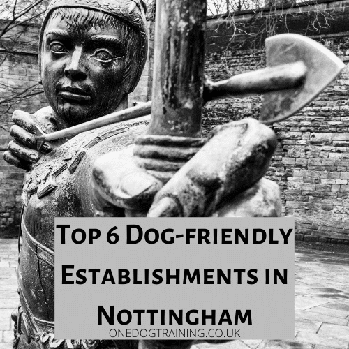 Top 6 Dog friendly Establishments in Nottingham