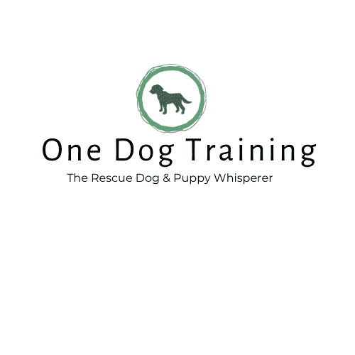 One Dog Training 5
