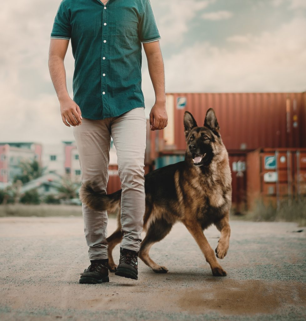 photo of man walking with his dog 2793158