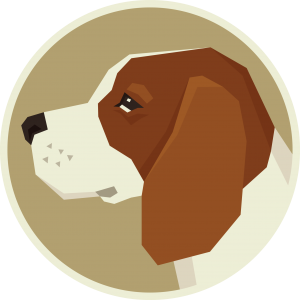 Beagle – Things You NEED To Know