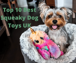 Top 10 Best squeaky dog toys UK