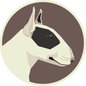 Bull Terrier – Things You NEED To Know!